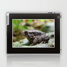 Living Stone Laptop & iPad Skin