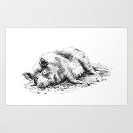 Sunbathing pig Art Print
