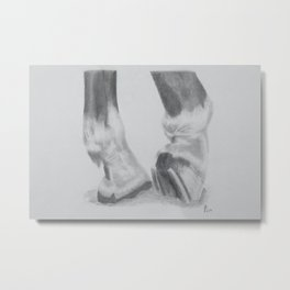 Shoes and Hooves Metal Print