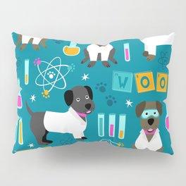 Lab Assistants Pillow Sham