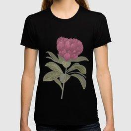 Protea Flower Illustration  T-shirt