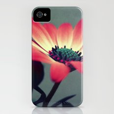 Look for your middle iPhone (4, 4s) Slim Case