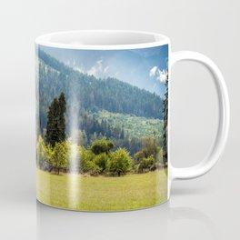 Overgrown Farmstead, Valley Near Blyn, WA Coffee Mug