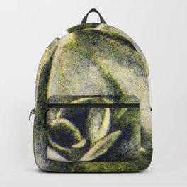 Vintage Succulent Watercolor Backpack
