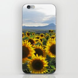 The Endless Summer iPhone Skin