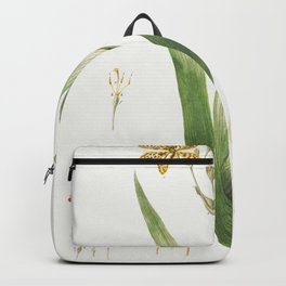 Plantae Selectae No 52-Ixia or Corn Lily by Georg Dionysius Ehret Backpack