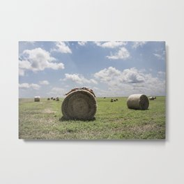 """Roll in the Hay"" Metal Print"