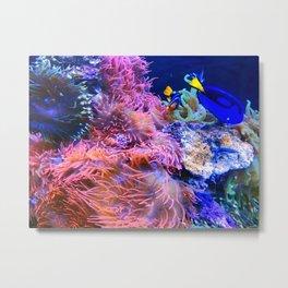 Tropical Undersea Fish Coral Metal Print