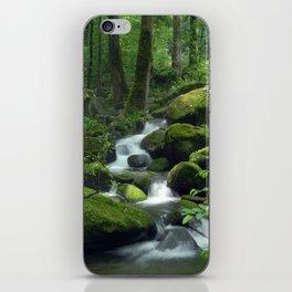 Summer Forest Brook iPhone Skin