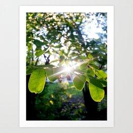 Burst of light Art Print