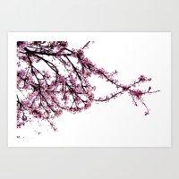 sakura Art Prints featuring sakura by MILDA HE