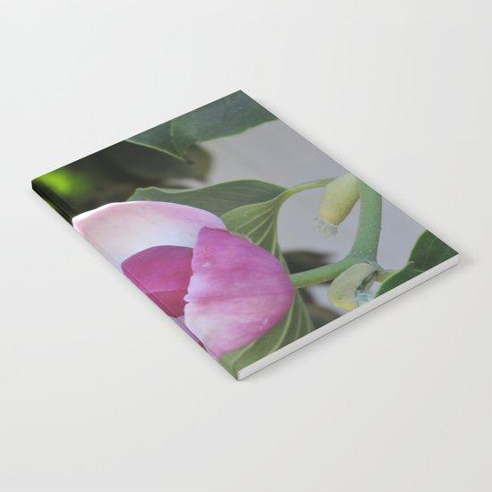 A Fig Prefigured Notebook
