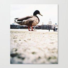 duckzilla Canvas Print