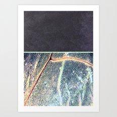 concrete.dragOnfly Art Print