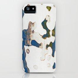 spirit of wood iPhone Case