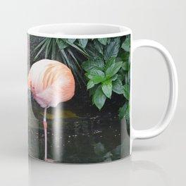 National Aviary - Pittsburgh - American Flamingo 1 Coffee Mug