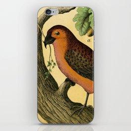 7 Birds iPhone Skin