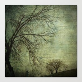 Mysterious Trees Canvas Print