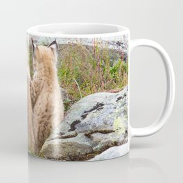 Lynx kittens - sister love Coffee Mug