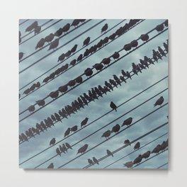 Parallel Murmuration Metal Print
