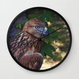 Young Eagle Wall Clock