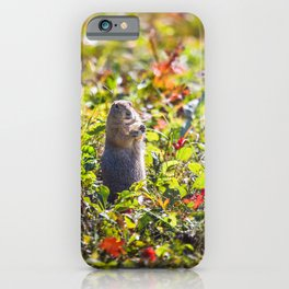 Breakfast on the Grass iPhone Case