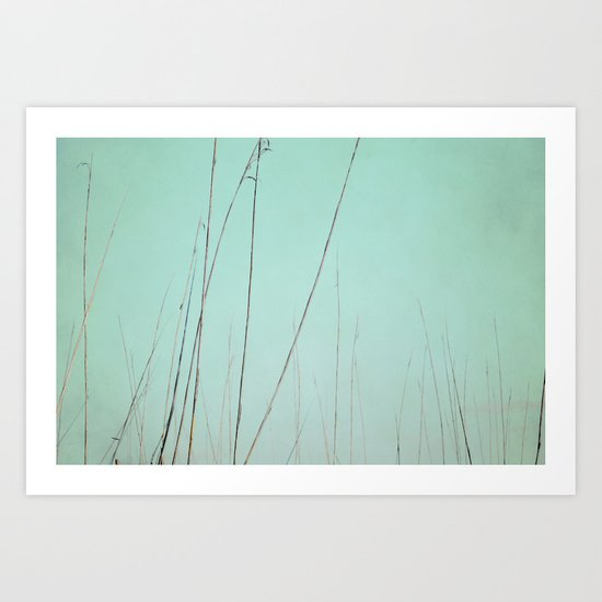 Quiet Breath Art Print