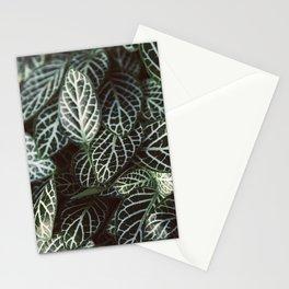 Botanical Gardens - Zebra Leaf #398 Stationery Cards