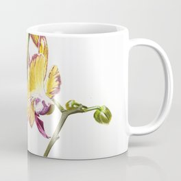Yellow Phalaenopsis Orchid Traditional Artwork Coffee Mug