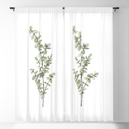 Baby Blue Eucalyptus Watercolor Painting Blackout Curtain
