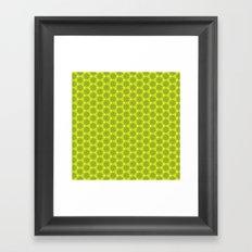 Kiwifruit Framed Art Print