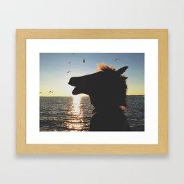 Horsehead in the sun Framed Art Print