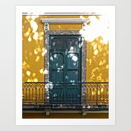 Old Balconies in Rio - 12 Art Print