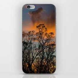 Desert Flora At Sunset - Bush  iPhone Skin