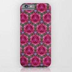 Apples Pattern Slim Case iPhone 6s