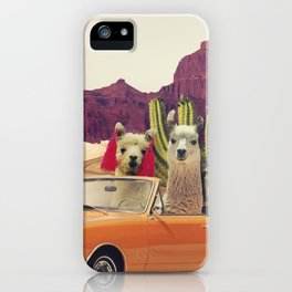 Llamas on the road 2 iPhone Case