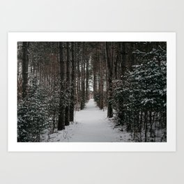 Winter Woods | Landscape and Nature Photography Art Print