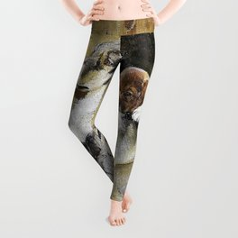 Moose dog with puppies - Digital Remastered Edition Leggings