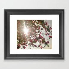 Bright Morning Framed Art Print