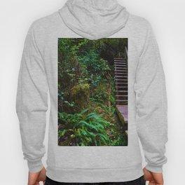 Staircase to heaven Hoody