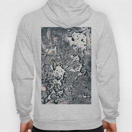 Chemigram 01 Hoody