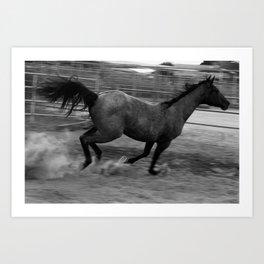 Running Horse 2 Art Print