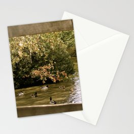 Duck Pond Stationery Cards