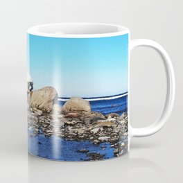 Stranded Iceberg Coffee Mug