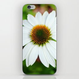 White Coneflower iPhone Skin