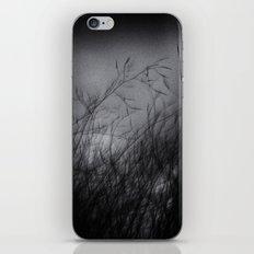 Sumi-e iPhone & iPod Skin