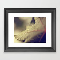 Drops on a Leaf Framed Art Print