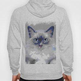 Cat 639 Hoody