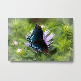 Red-spotted Purple Metal Print