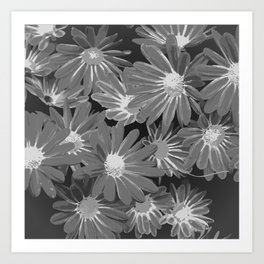 Gray Flowers Art Print